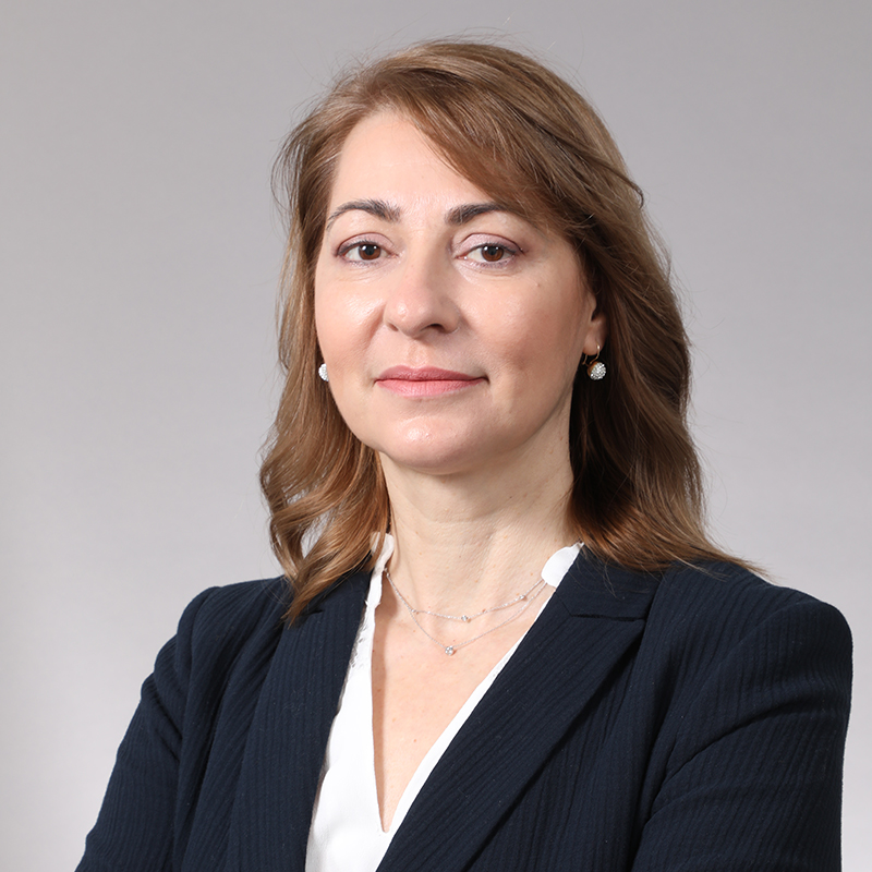 dr mihaela boulu